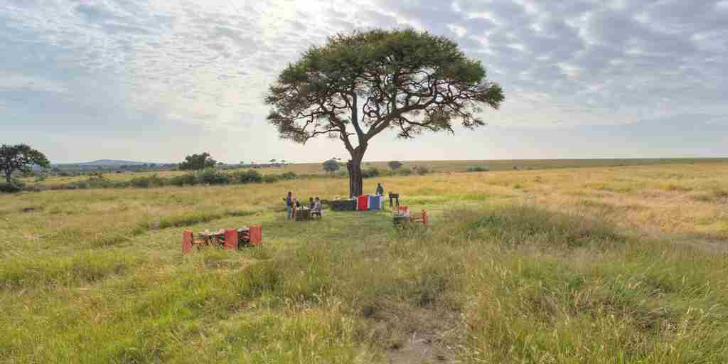 Olakira-Bush-breakfast-in-the-serengeti.jpg