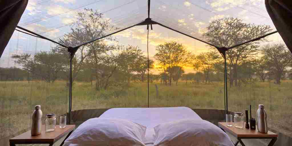 Olakira-View-from-the-bed-within-the-star-gazing-tent.jpg