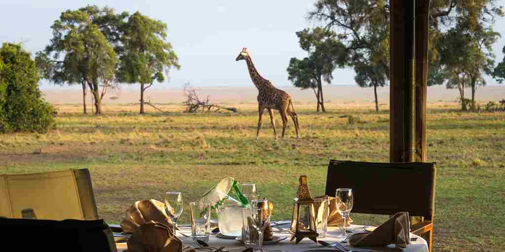 dining table giraffe governors camp kenya