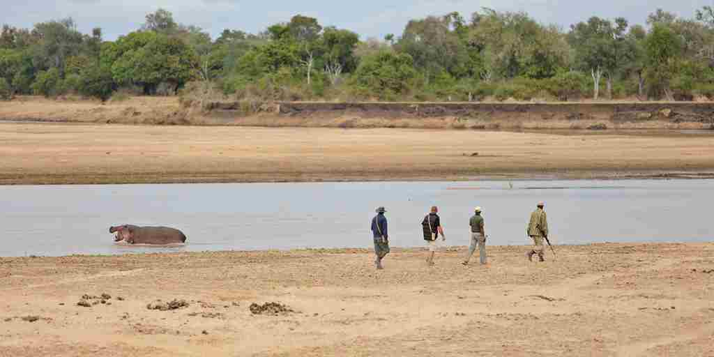 Walking-Safari-Zambia.jpg