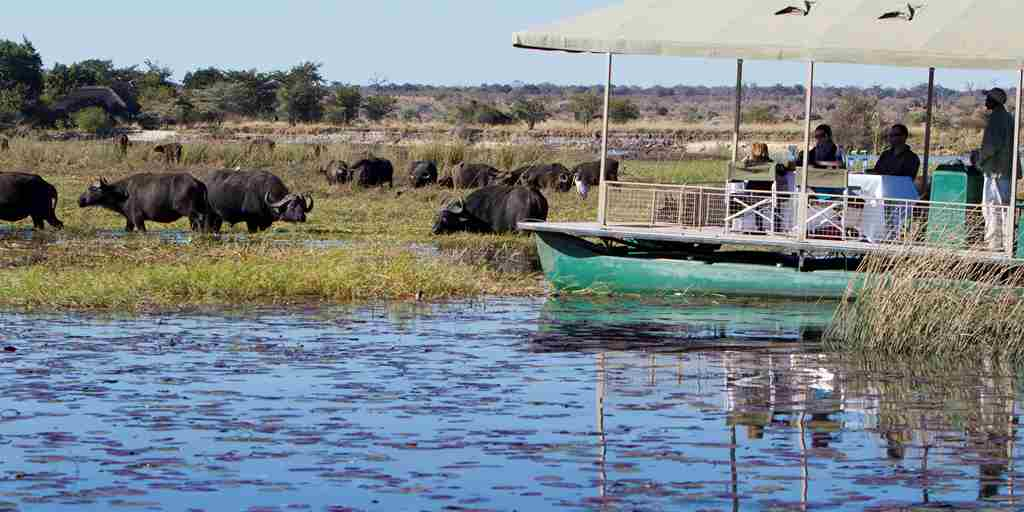 Boating-Safari-Chobe-Park-Botswana.jpg