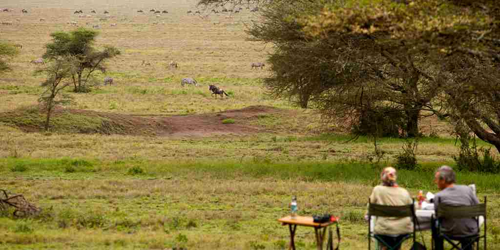 Serengeti-Green-Camp-Game-Viewing.jpg