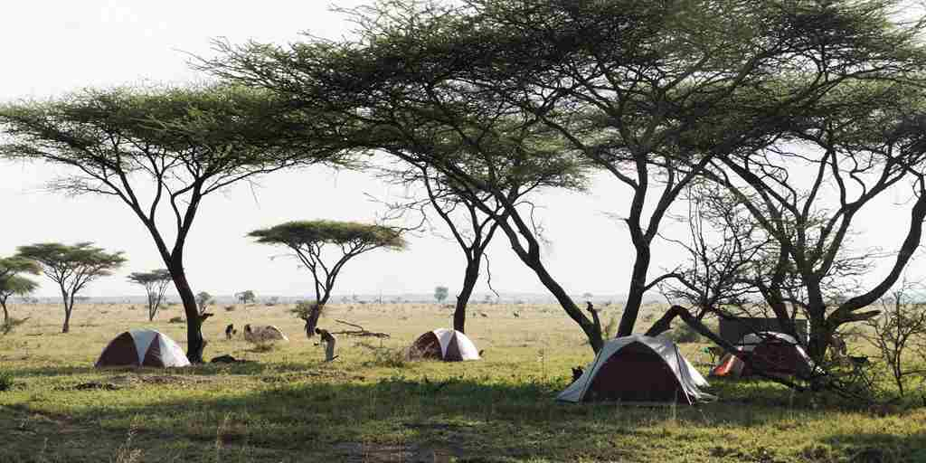 Serengeti-Walking-Camp-Tents.jpg