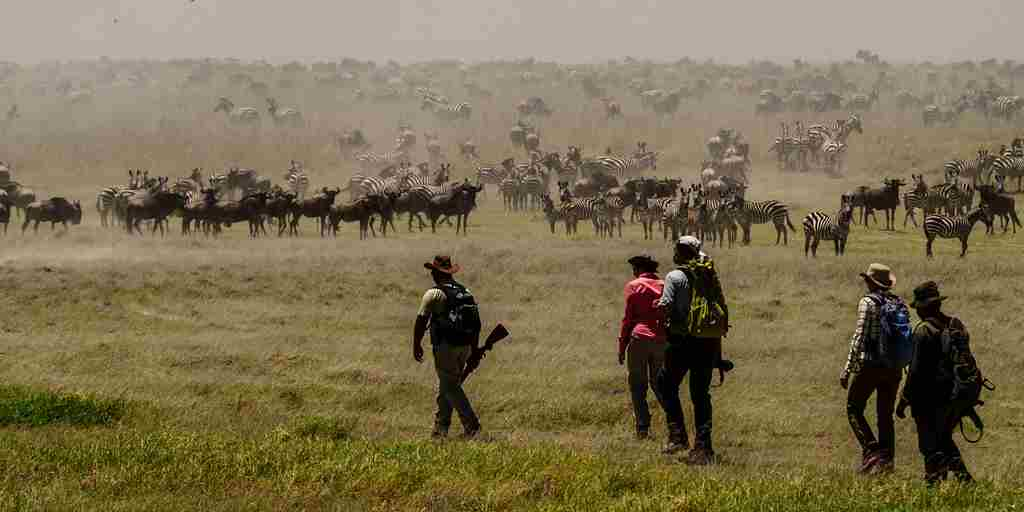 Lake Manyara Walking Safari