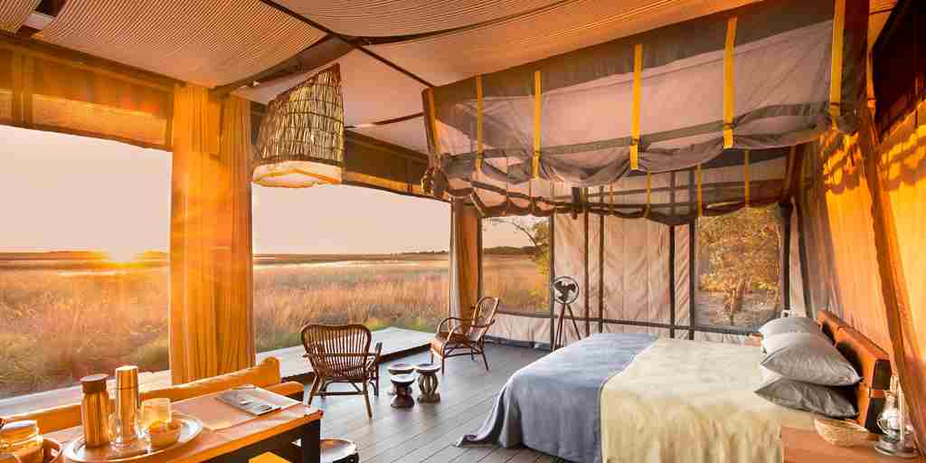 safari-room-view.jpg