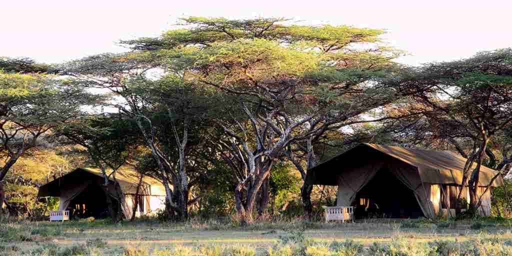 serian-serengeti-kakessio-wetu-serengeti-south-camp1.jpg