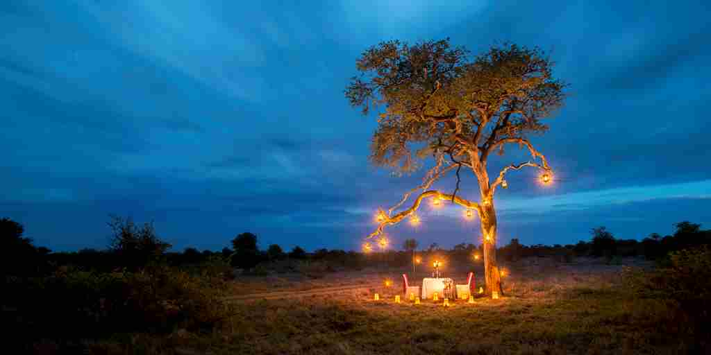 Tanda-Tula-Bush-Bush-Private-Dinner.jpg