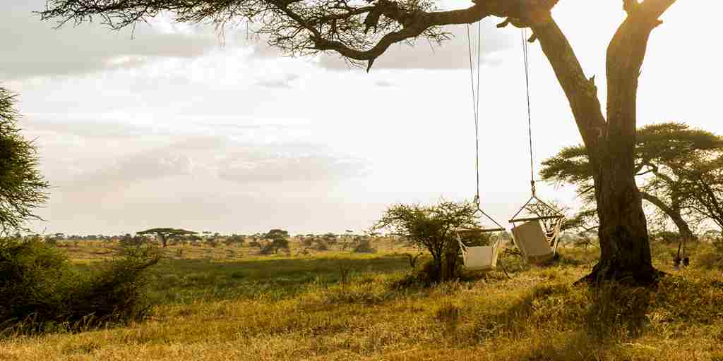 guest-hammocks-namiri-plains-serengeti-tanzania-yellow-zebra-safaris.jpg