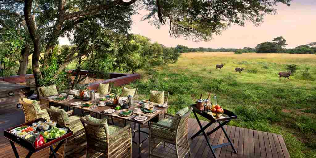 views-guest-area-andbeyond-phinda-vlei-lodge-south-africa-yellow-zebra-safaris.jpg