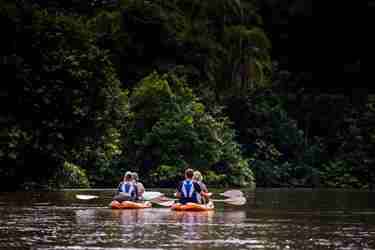 kayak river odzala discovery camps  congo yellow zebra safaris
