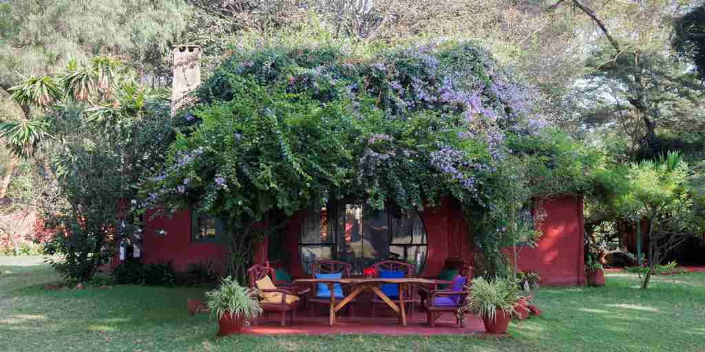 olerai-house-flowers-outside-kenya.jpeg