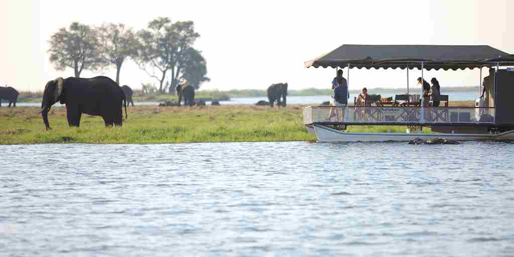 &Beyond-Chobe-Under-Canvas-elephants-river.jpg