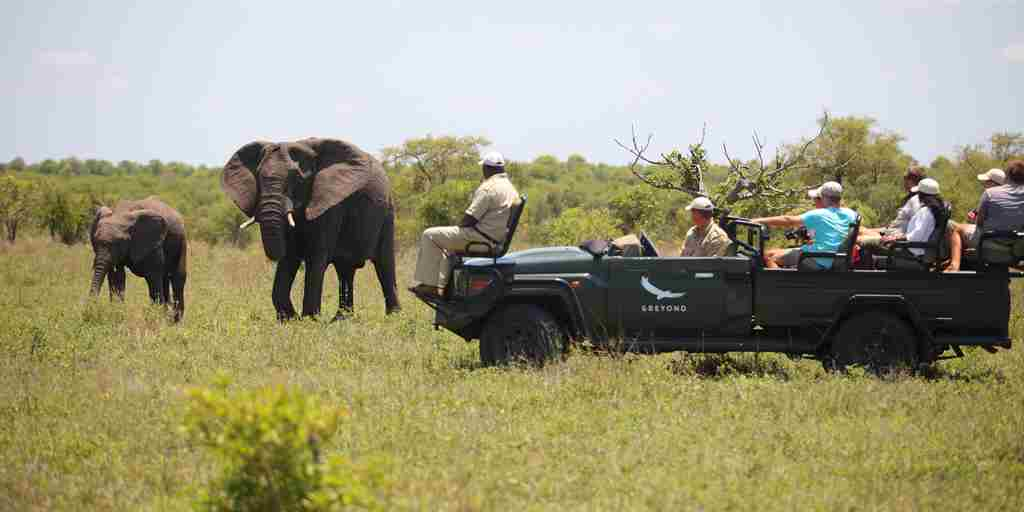 andBeyond-Ngala-Safari-Lodge-Game-Drive.jpg