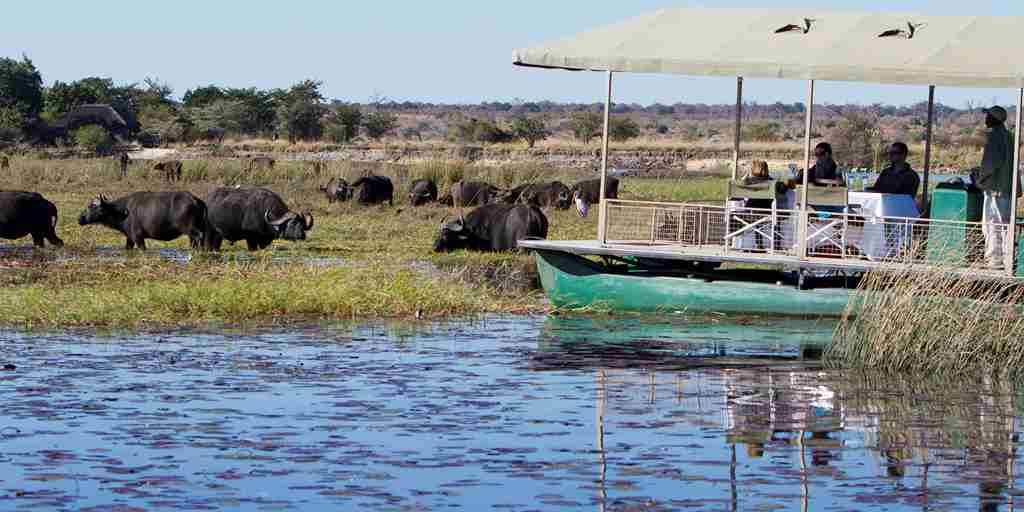 Chobe-Savanna-Lodge-boat cruise.jpg