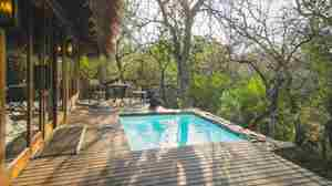 jabulani suites   plunge pool  sunset