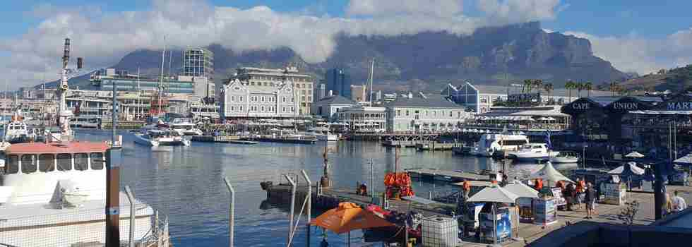 shona-cape-town-v-a-waterfront-yellow-zebra-safaris.jpg