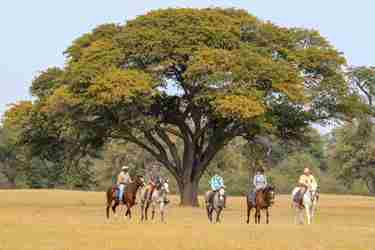 36. Imvelo Safari lodges - Bomani - Riding on the Ngamo plains.jpg