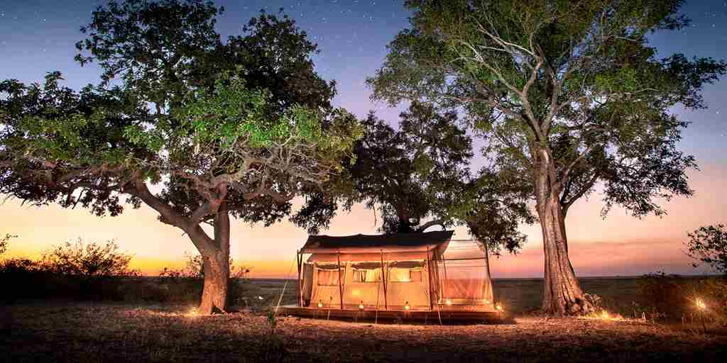 linyanti expeditions african bush camps botswana dook