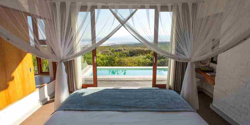 forest suite pool bedroom 01 grootbos forest lodge south africa yellow zebra safaris