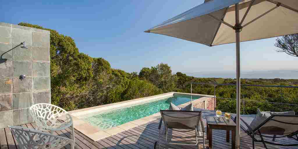 forest suite pool exterior grootbos forest lodge south africa yellow zebra safaris