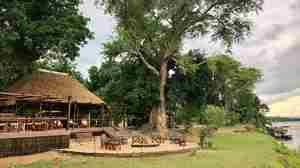new bar dining area chiawa camp zambia yellow zebra safaris