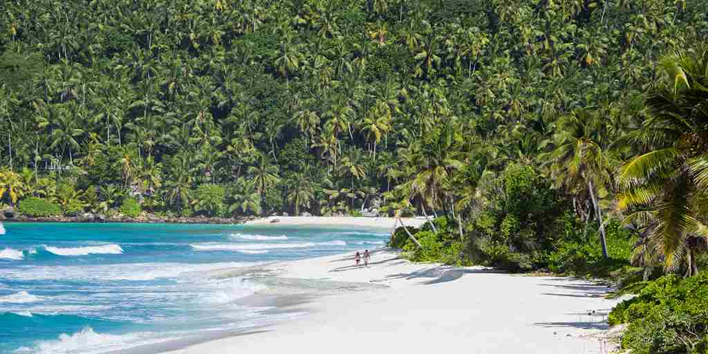 north-island-beach-seychelles-yellow-zebra-safaris.jpg