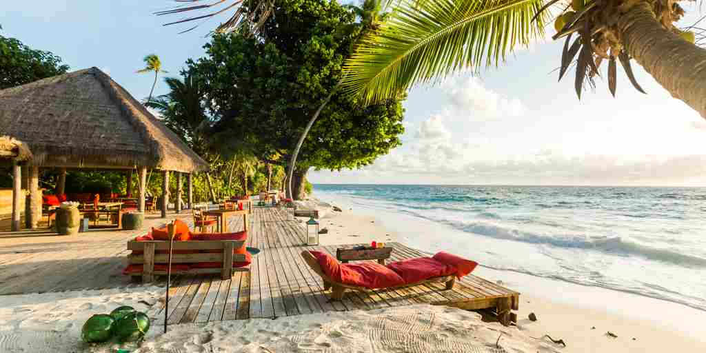 north-island-sun-loungers-seychelles-yellow-zebra-safaris.jpg