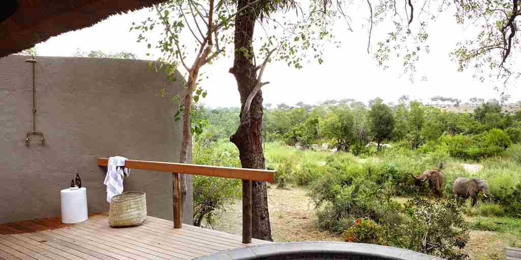 londolozi-varty-camp-south-africa-pool-deck-yellow-zebra-safaris.jpg