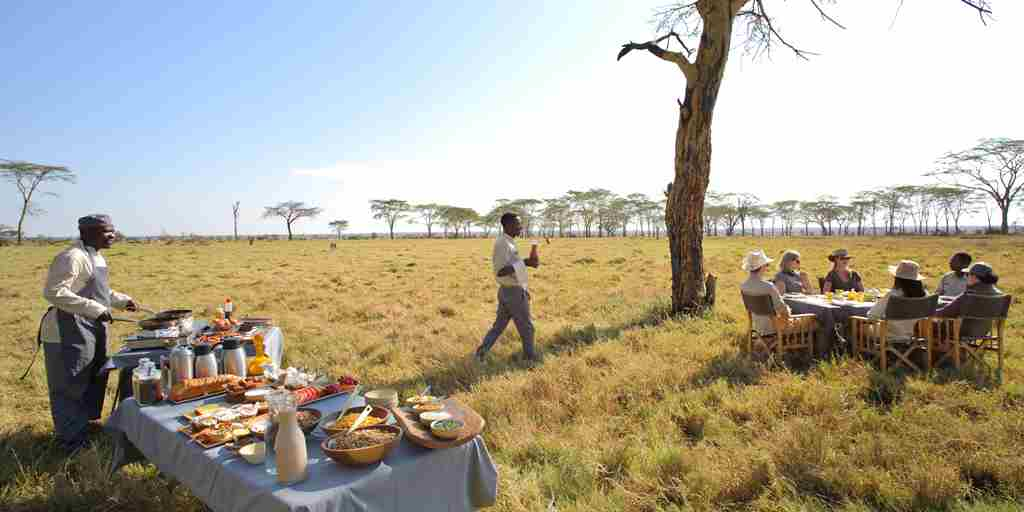 breakfast fever tree forest namiri plains tanzania yellow zebra safaris