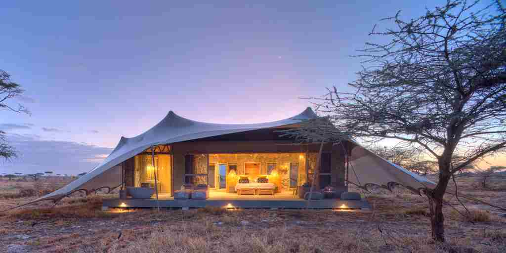 tent exterior dawn namiri plains tanzania yellow zebra safaris