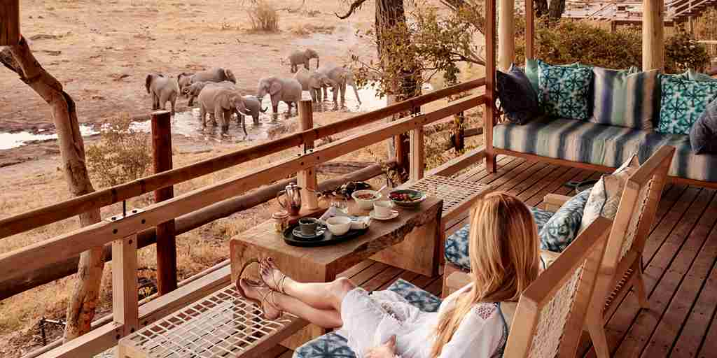 belmond savute elephant lodge botswana game viewing elephants yellow zebra safaris