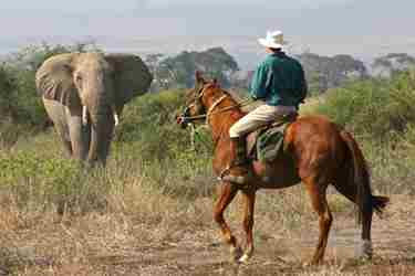horse-riding-sosian-kenya-romantic-safari-blog-yellow-zebra-safaris.JPG