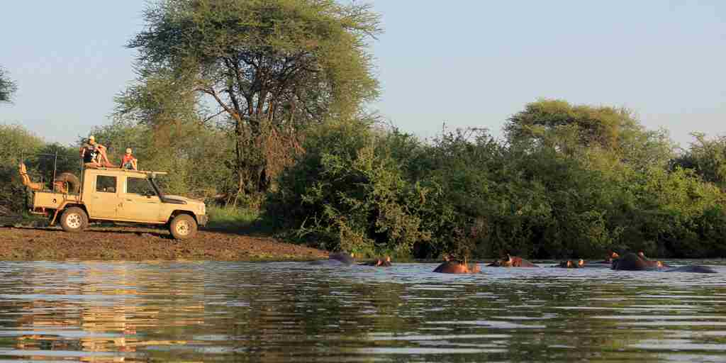 meru-wilderness-camp-kenya-game-drive-hippos-yellow-zebra-safaris.JPG