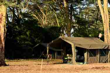 meru wilderness camp kenya tent yellow zebra safaris