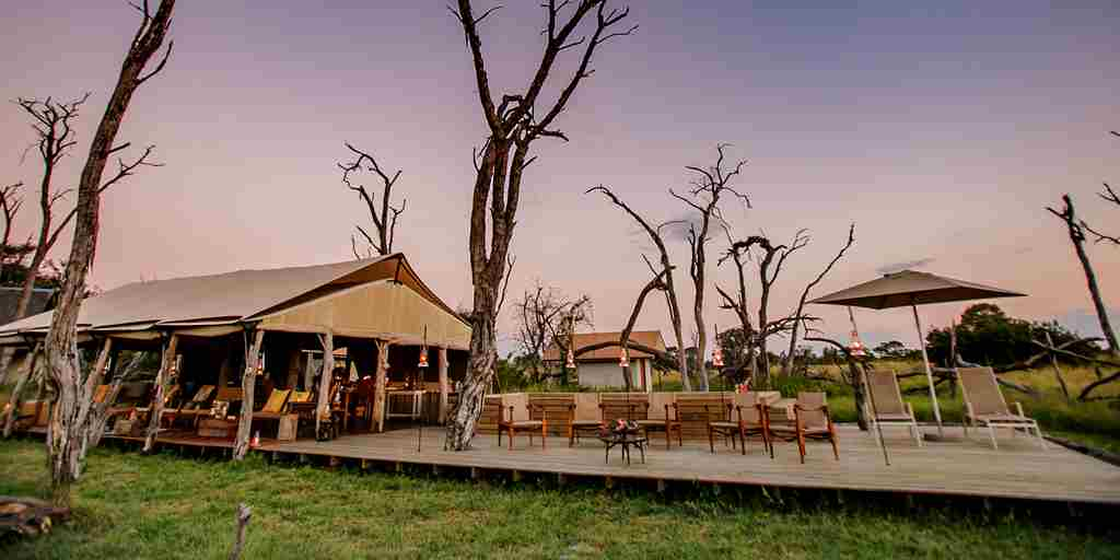 the private hide outside view zimbabwe yellow zebra safaris