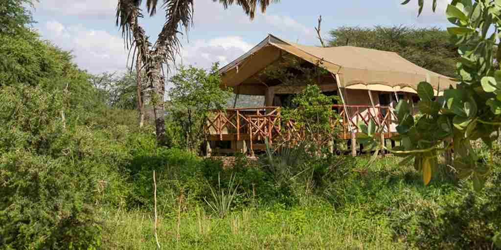 elephant-bedroom-camp-overview-kenya-yellow-zebra-safaris.jpg