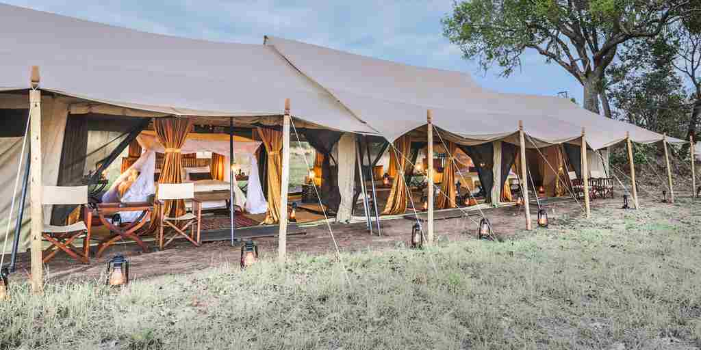 legendary serengeti camp tent tanzania yellow zebra safaris