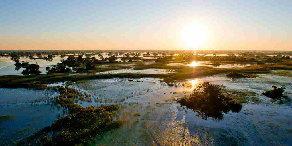 okavango-delta-park-sunset-yellow-zebra-safaris.jpg