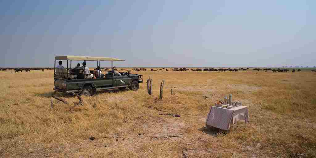 savute-game-drive-botswana-yellow-zebra-safaris.jpg