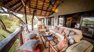 garonga safari camp south africa balcony yellow zebra safaris