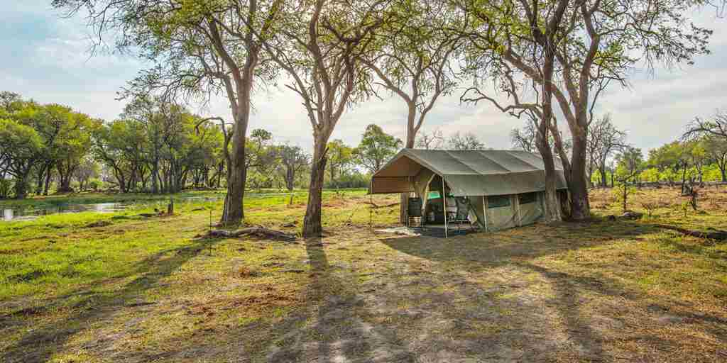 golden-africa-safaris-tent-day-outside-botswana-yellow-zebra-safaris.jpg
