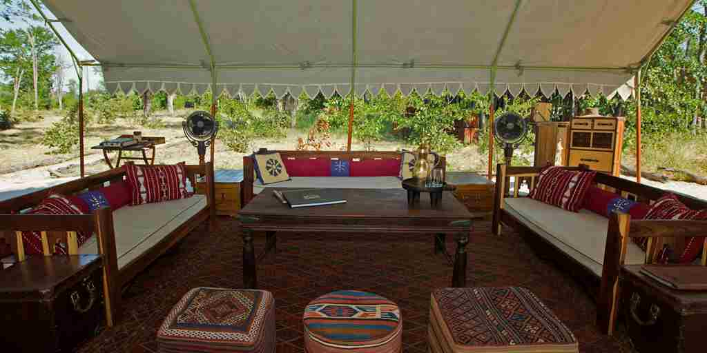 selinda explorers camp lounge botswana yellow zebra safaris