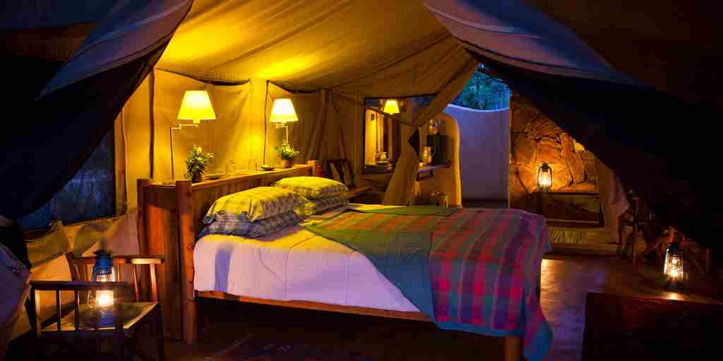 kitich forest camp double bedroom kenya yellow zebra safaris