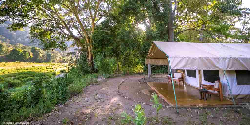 kitich forest camp tent exterior kenya yellow zebra safaris