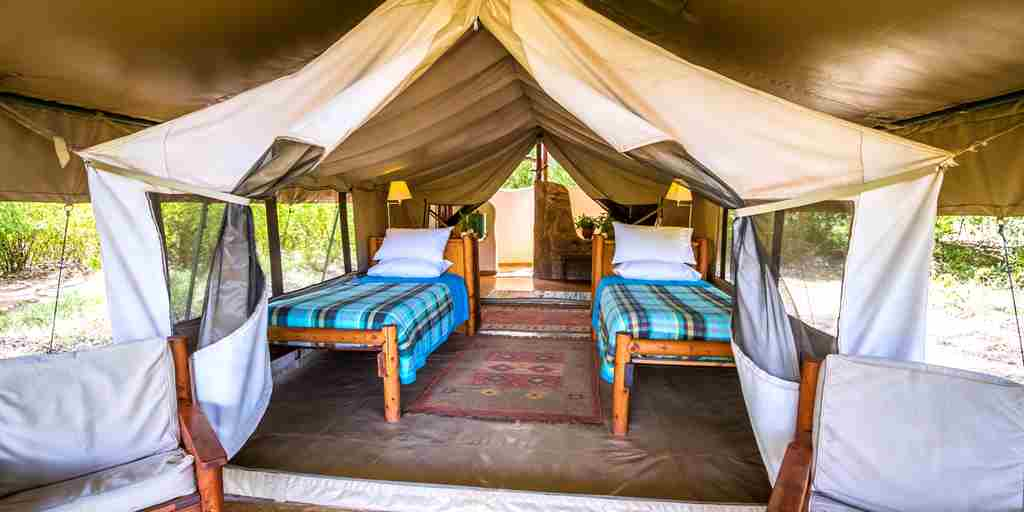 kitich forest camp twin room kenya yellow zebra safaris