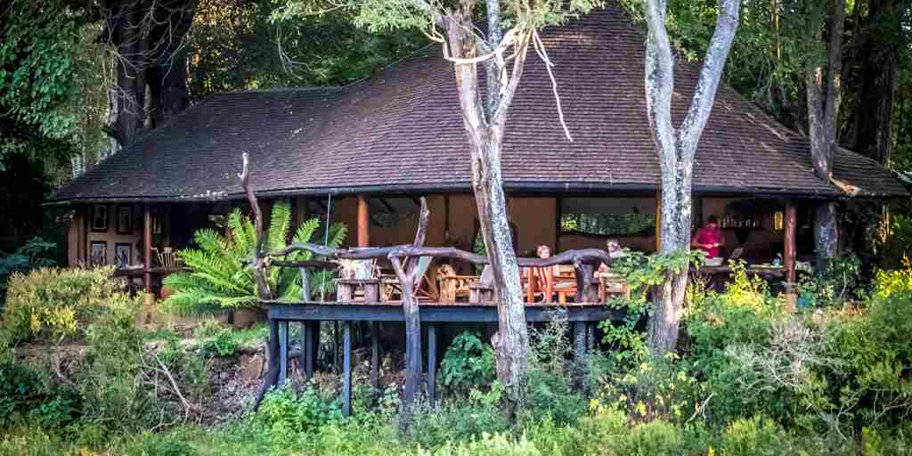 kitich forest camp exterior kenya yellow zebra safaris