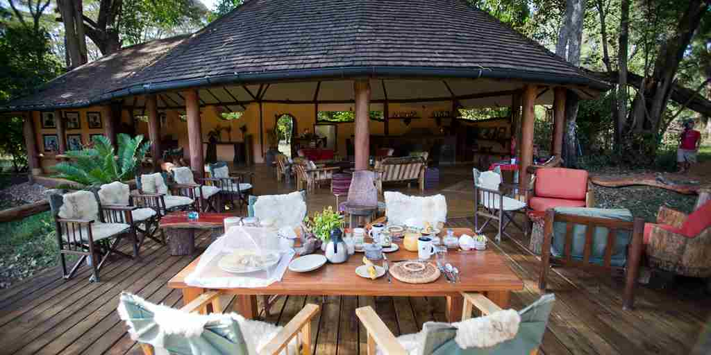 kitich forest camp decking area kenya yellow zebra safaris