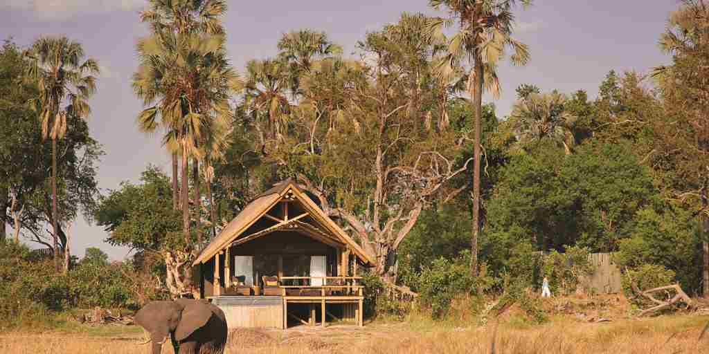 belmond eagle island camp exterior view botswana yellow zebra safaris