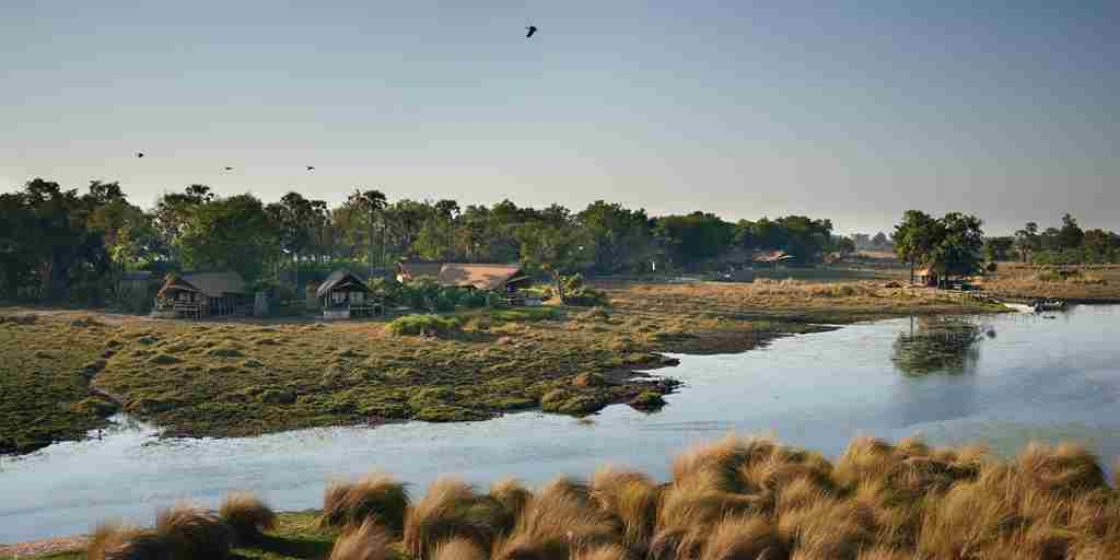 belmond eagle island overview view botswana yellow zebra safaris