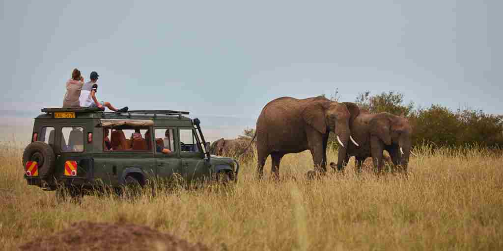 spekes-camp-game-drive-kenya-yellow-zebra-safaris.jpg